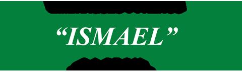 Frenos Ismael Logo